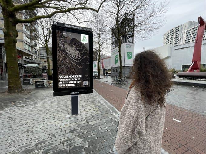 Трансляция жизни животных из зоопарка в Роттердаме
